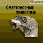 Смертоносные животные