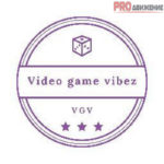 Videogame Vibez