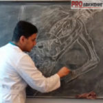 Лекции патологическая физиология