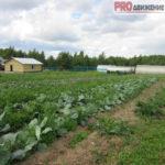 FermaTorg Товары для фермеров и дачников